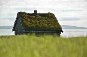 Green Roofs – Living Roofs