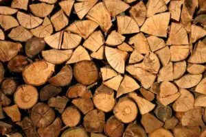 Types of Wood Used for Building Houses