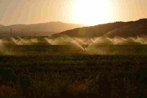 Types of Irrigation Systems: Advantages and Disadvantages